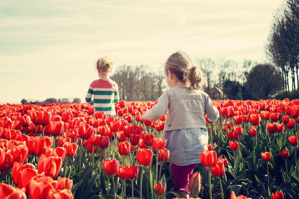 verano en la naturaleza con niños